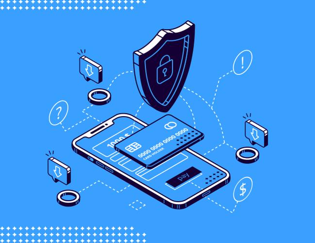 Siber Güvenlik ve EVSSL